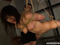 Enslaved Asian stupid Kana Sato gets roped and sucks spear